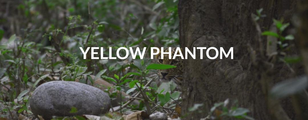 Yellow Phantom
