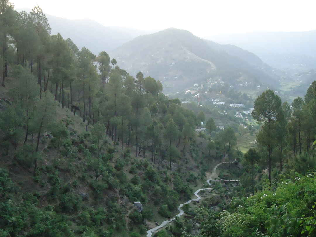 Binsar - Untouched, Serene and Peaceful..!