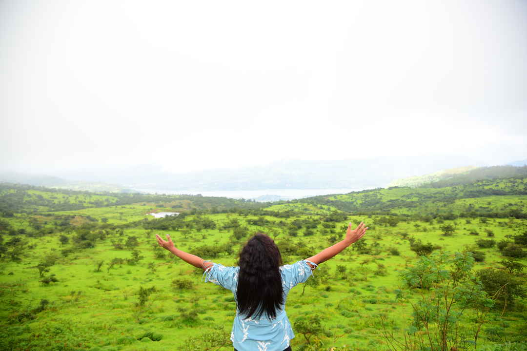 Kaas Plateau or Kaas Pathar  - UNESCO World Natural Heritage Site