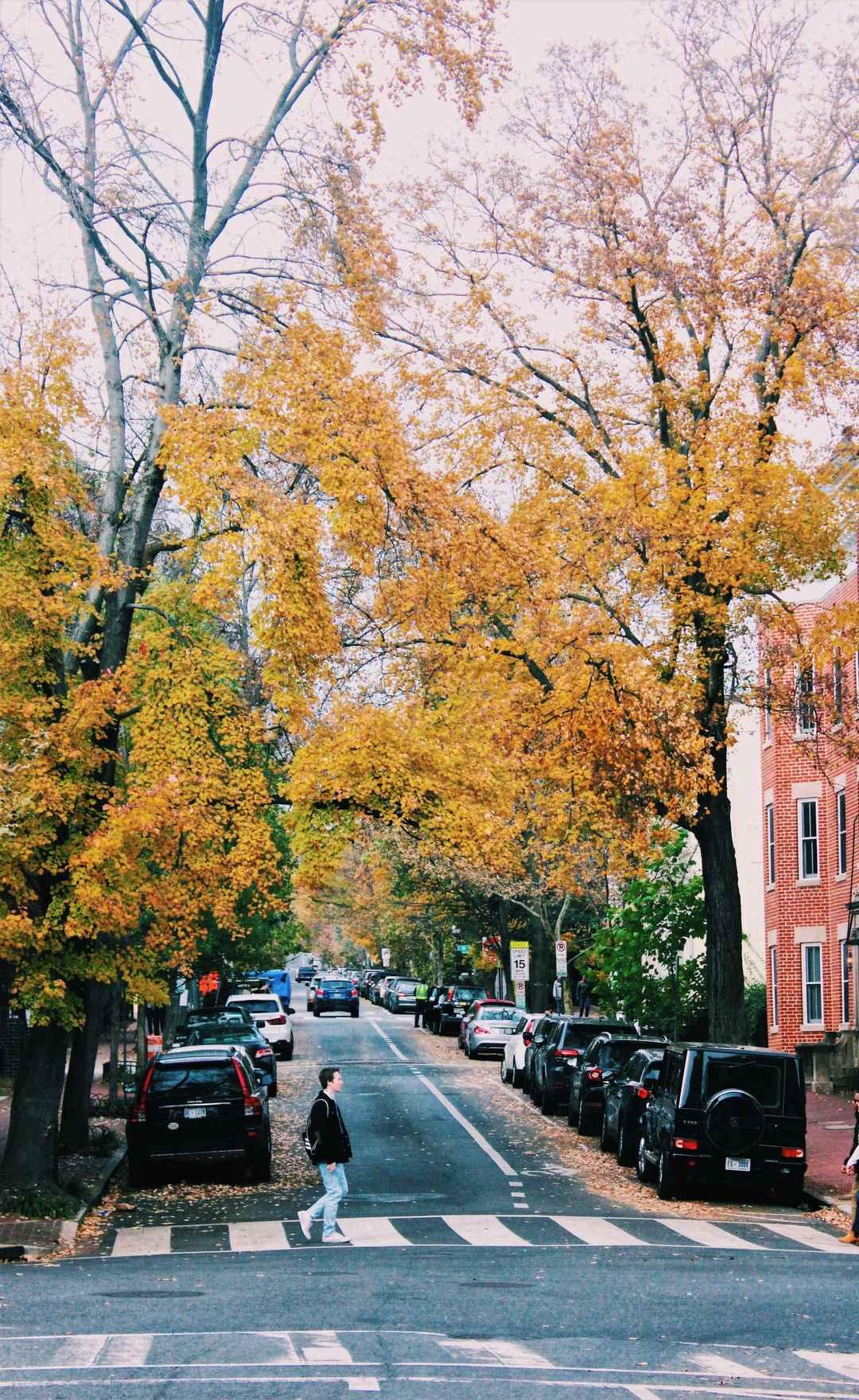 Georgetown in Late November