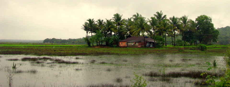 Divar Island Goa Itinerary: How to Reach, Things to Do On Divar Island