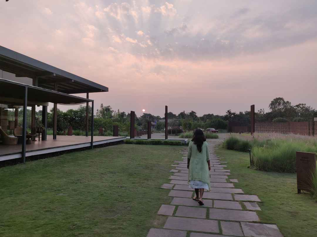 When you fall in love at Woods in Gir #junglestay