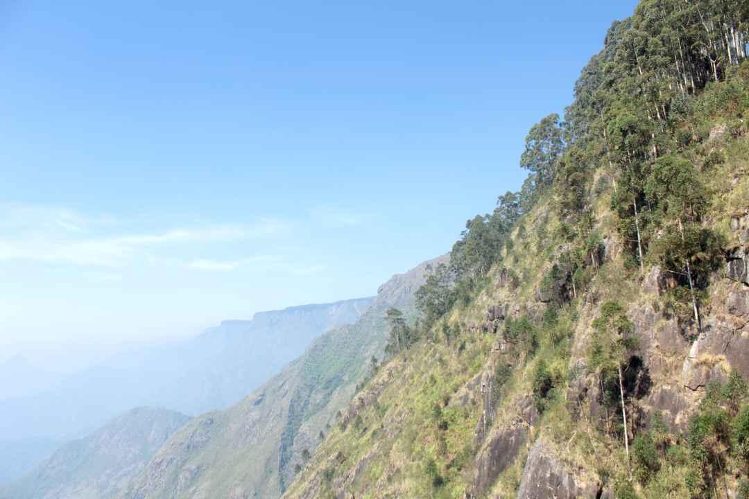 Off The Beaten Trail My Trek To Canopy Hills In Vattakanal Tripoto