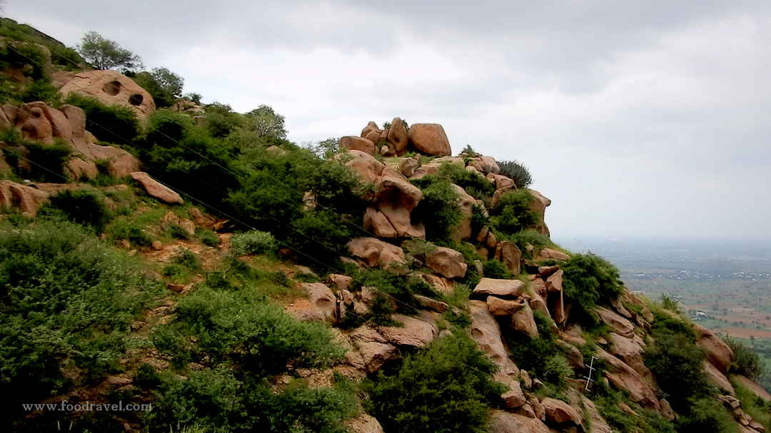 A Journey to an Extinct Volcano and Origin Place of Chyawanprash - Dhosi  Hill - Tripoto