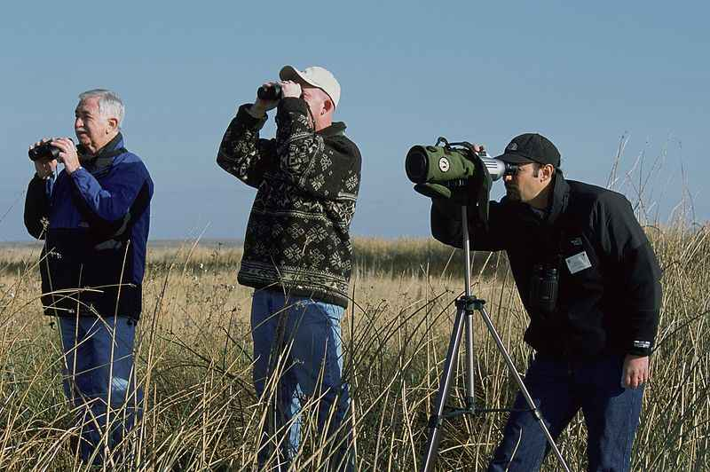 Everything You Need To Know About Bird-Watching In Uttarakhand