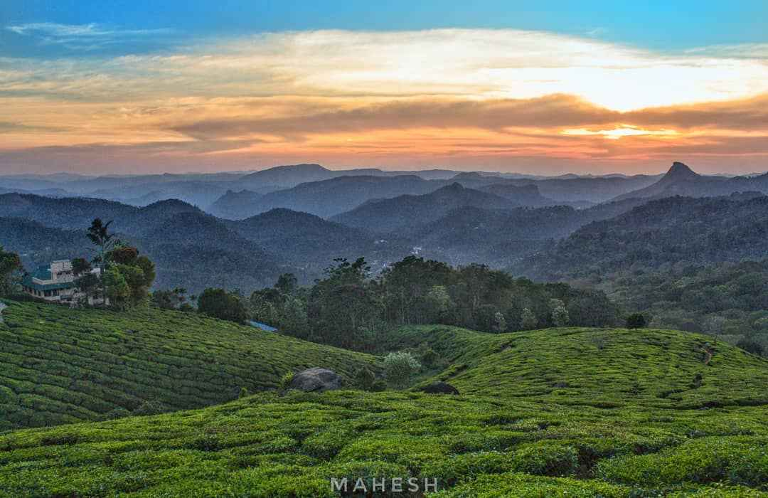 How to Plan your trip to Kerala for 1 week