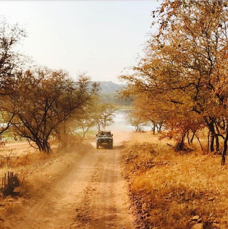 Weekend Getaway - Mumbai to Ranthambore