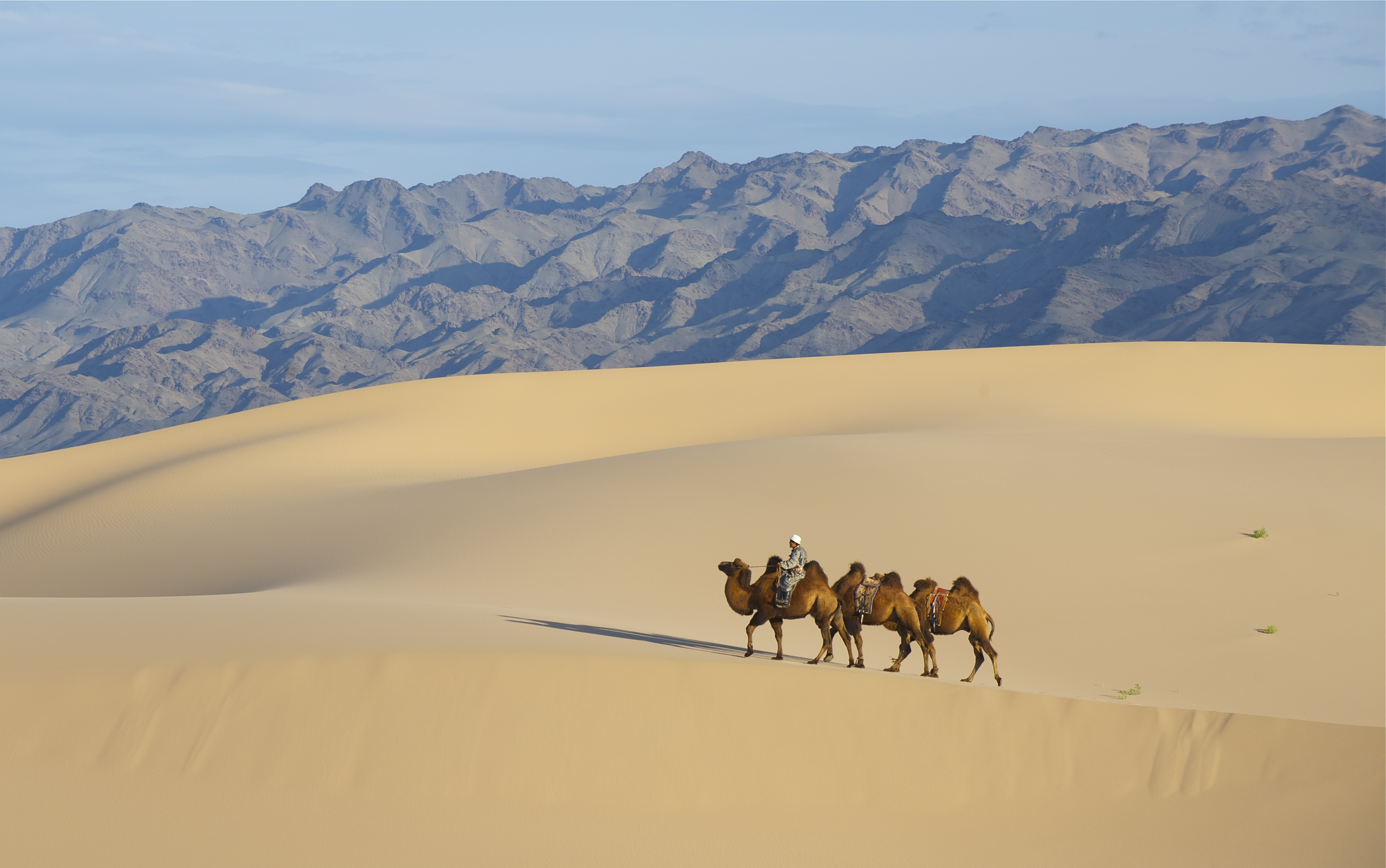 gobi desert mongolia itinerary from india how to reach other