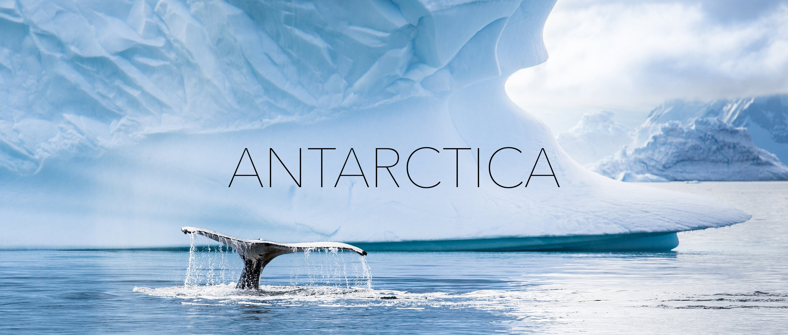 All You Need To Know About Planning A Trip To Antarctica