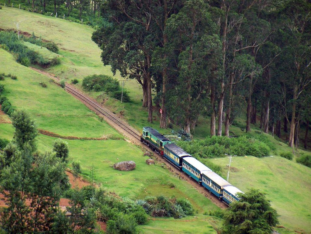 Photo of 8 Mesmerizing Train Journeys in India That Will Leave You Spellbound 8/8 by Disha Kapkoti